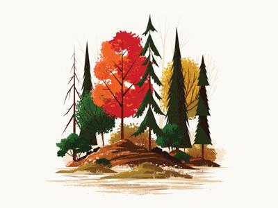 Foliage Print II