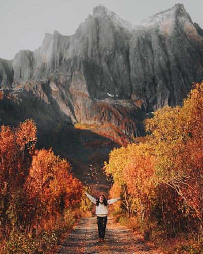 Norway Autumn
