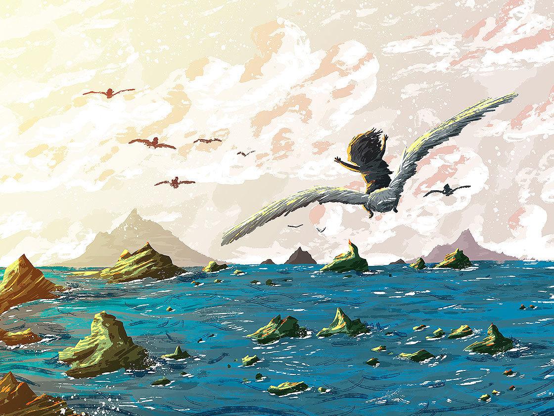 Seagull Journey