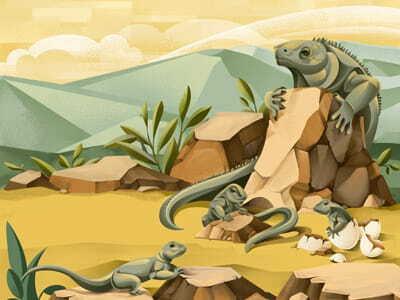 The Price of Extinction - Iguana