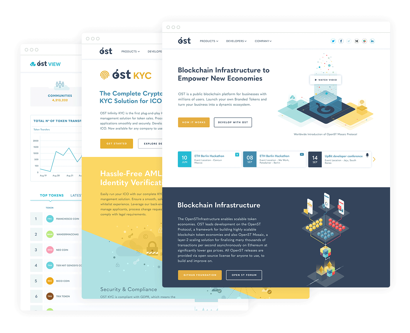 OST web site and OST VIEW user interface design