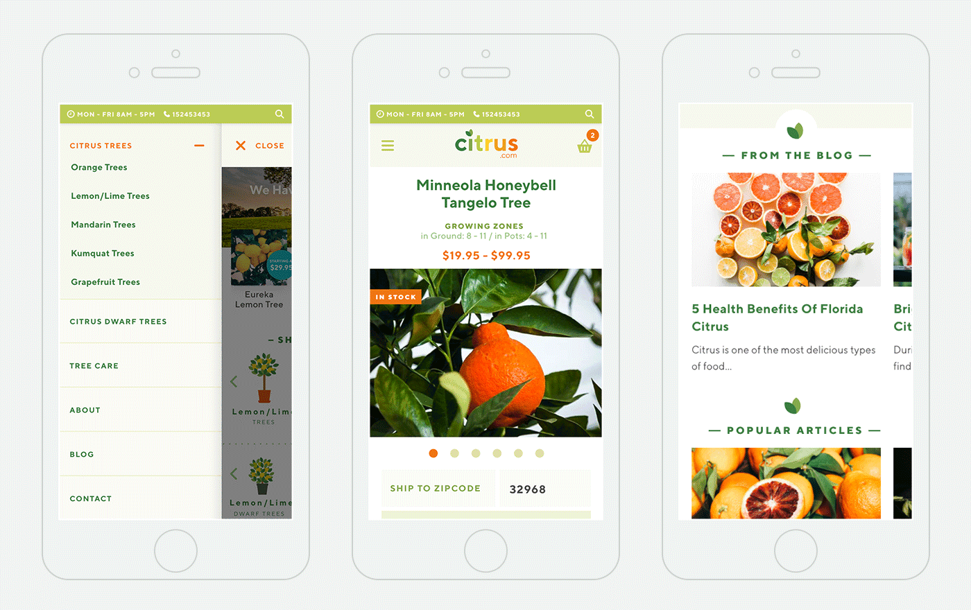 Some of the pages of the Citrus.com of the  mobile version of the website template design